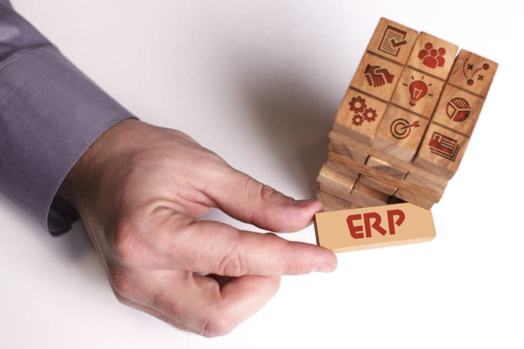 Ways A Local Business Expert Is Vital To ERP Implementation Success | M.SaaS